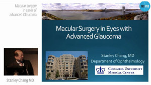 Macular surgery in cases of advanced Glaucoma